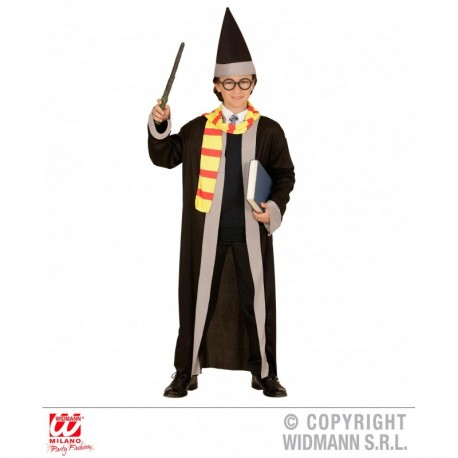 Costume Mago Harry Potter