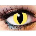 Lenti contatto cat eye 90 days